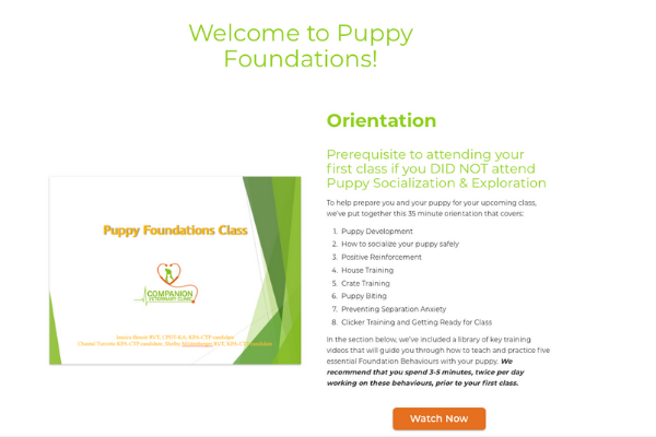 Screen Capture of Online Dog Training Resources